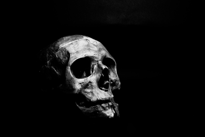 4k-wallpaper-black-and-white-bone-1270184