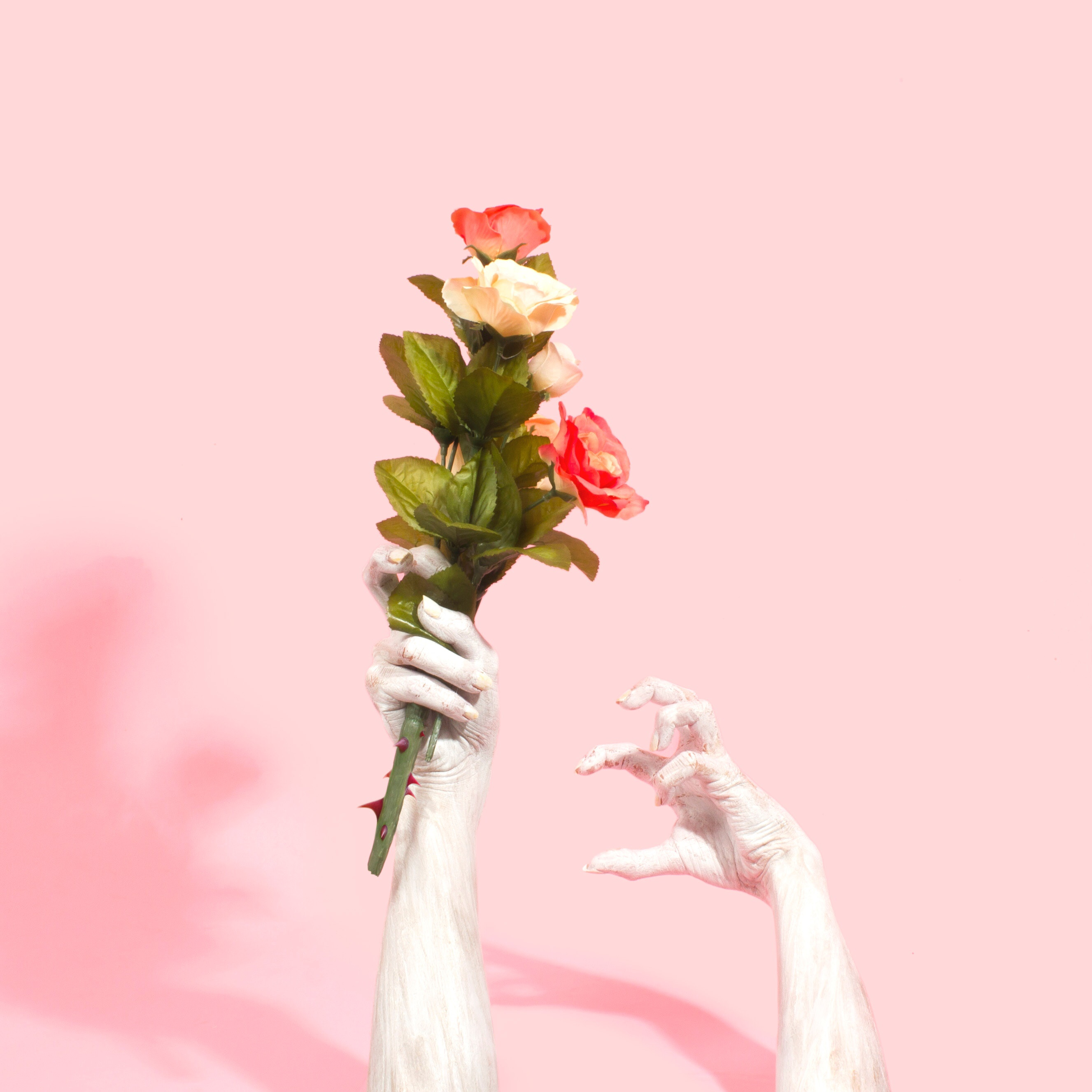 Zombie hand and hand with flowers