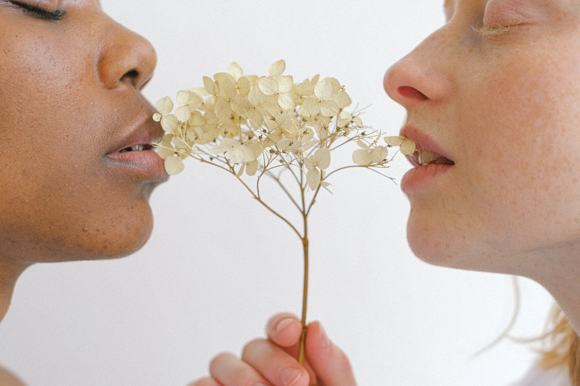 black woman and white woman bite a seed head